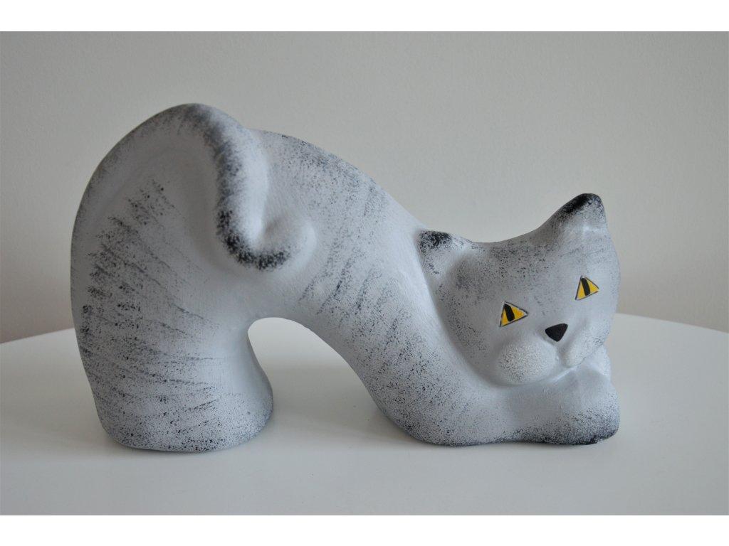 Kočka - prohnutá