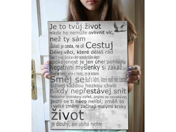 Dárek, nástěnný obraz s citátem