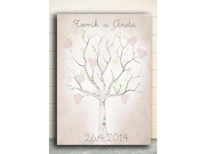 strom svatební