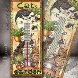 motiv kočky
