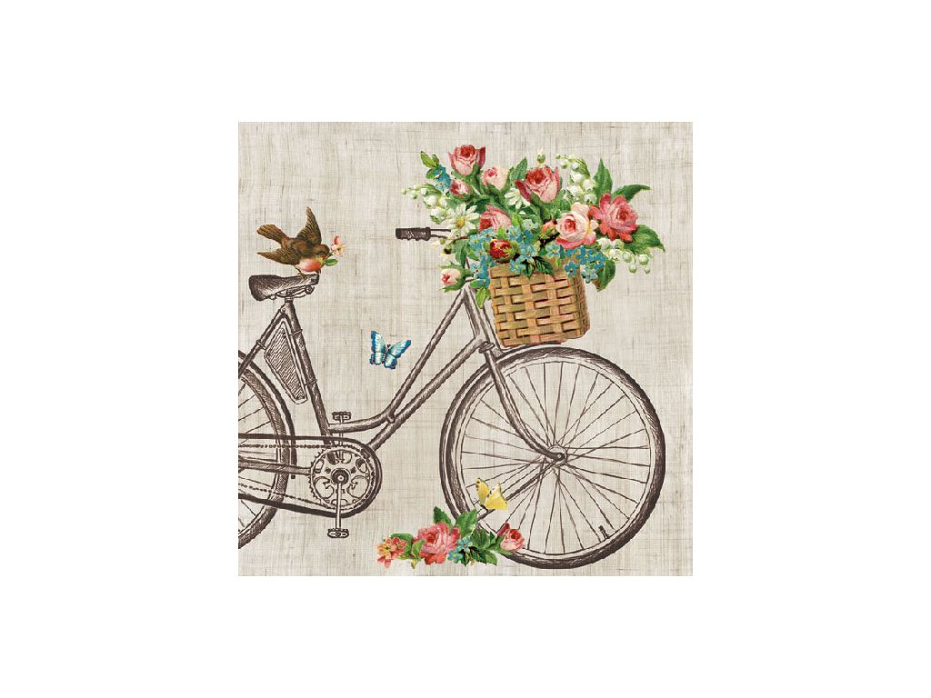 Napkin 33 Robin On Bike