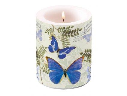 Svíčka dvouplášťová Blue Morpho
