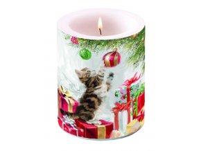 Svíčka velká Kitten And Bauble