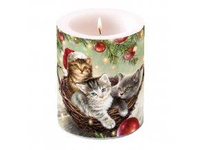 Svíčka velká Cats In Basket