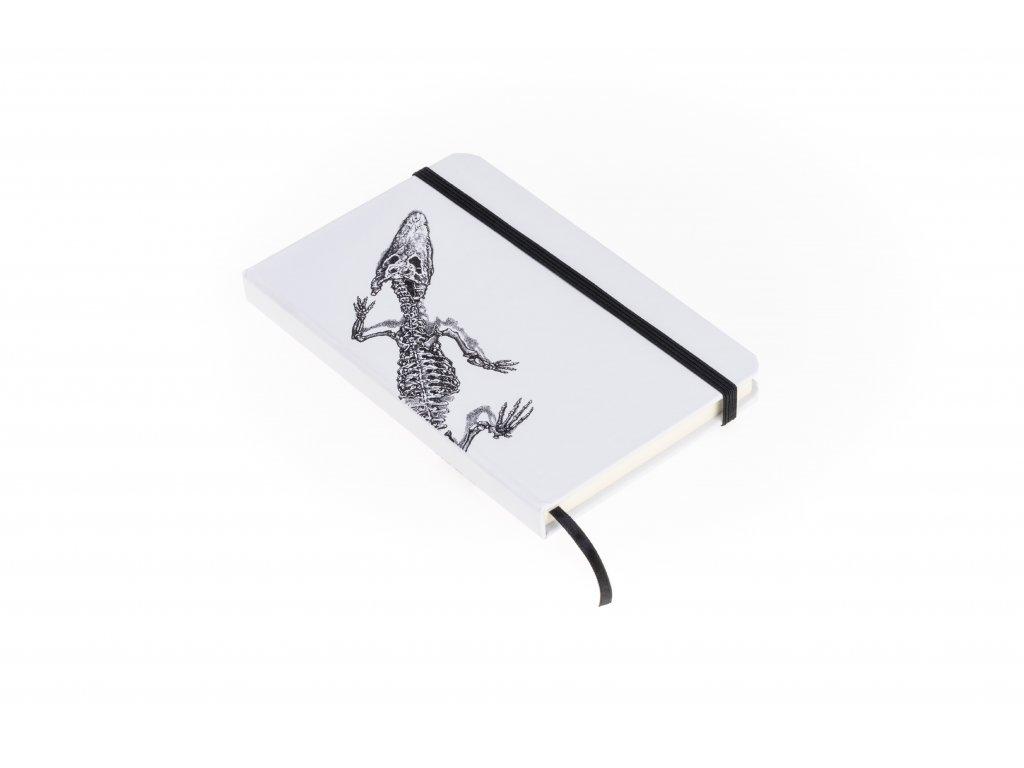 Deník draka