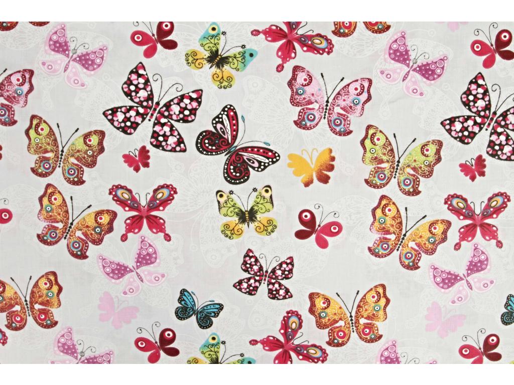 Motýl duhový (2)
