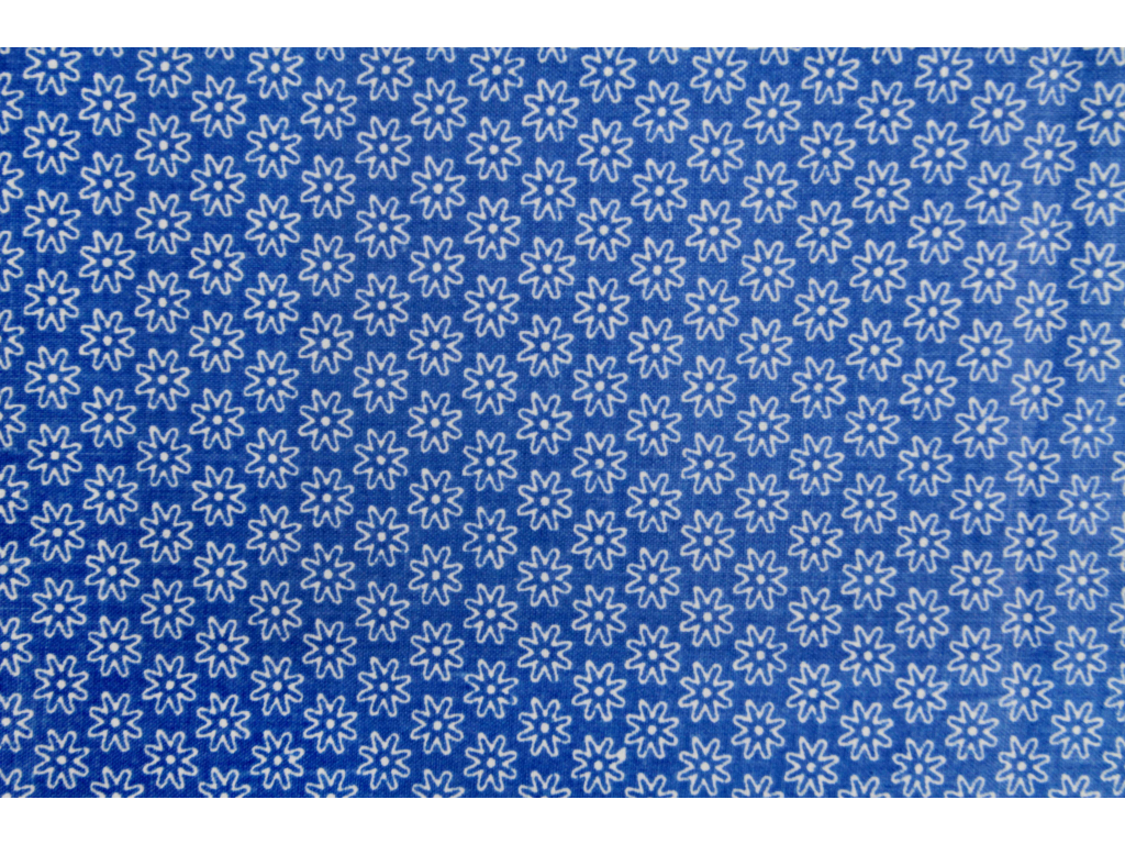 Juliána modrá (2)