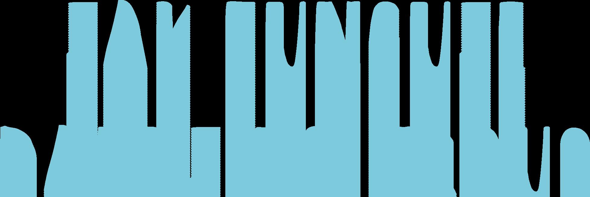 Napis_jakFUnguje