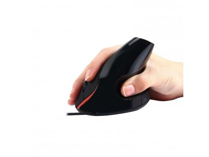 EW3156 R0 mouse hand
