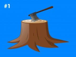 28 databaza lesnictva a tazba dreva 1