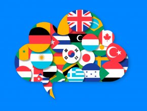 41 databaza jazykovych skol