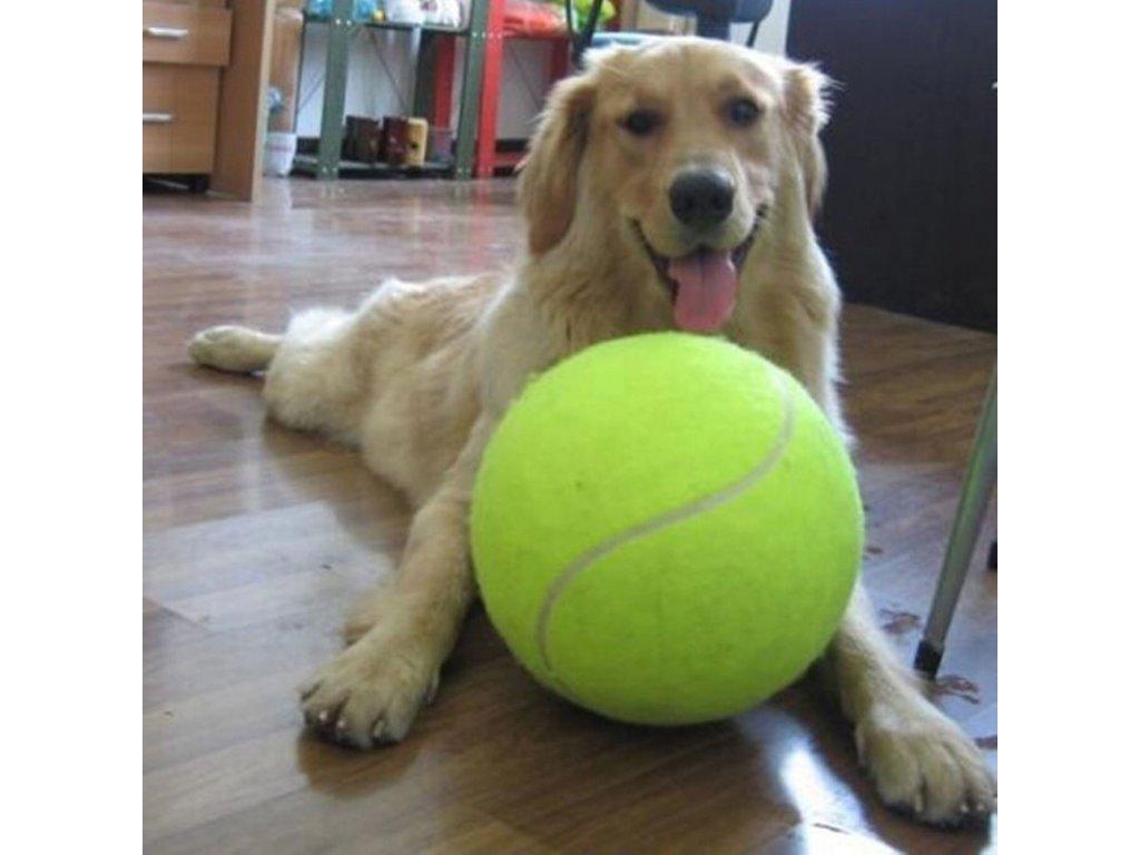 10244 velka tenisova lopta pre psov 24 cm
