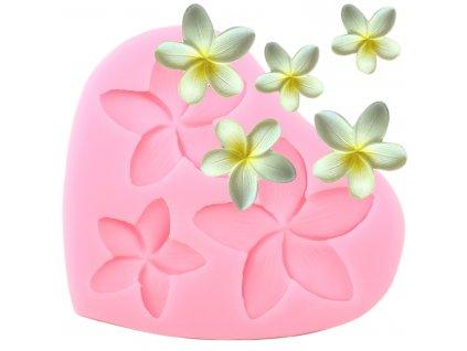 55730 silikonova forma kvety plumerie