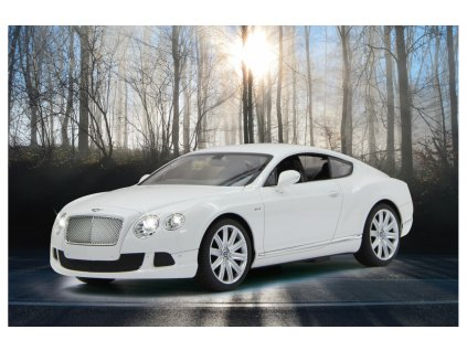 bentley continental gt 1 bile (1)