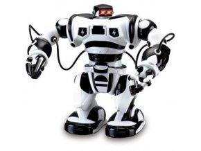 RC Robot ROBONE