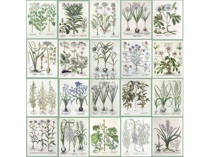 11242 1 tapeta na zed estahome greenhouse 158826