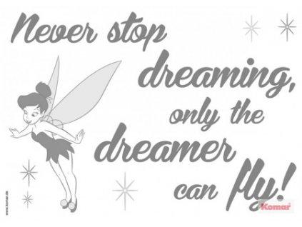 5893 7 fototapeta komar never stop dreaming 14001h