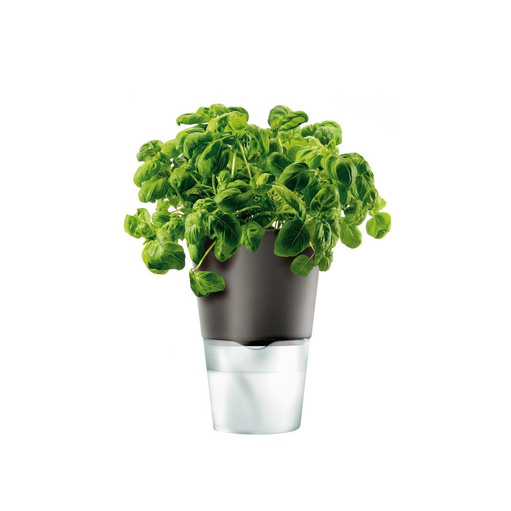 15567 samozavlazovaci kvetinac na bylinky tmave seda 13cm eva solo
