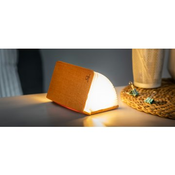 minifabricbooklight15