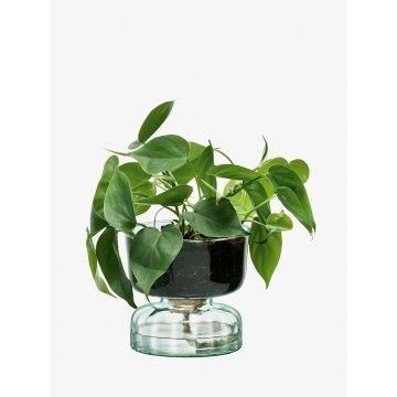 Samozavlažovací květináč Canopy, výška 13 cm, čirý - LSA International