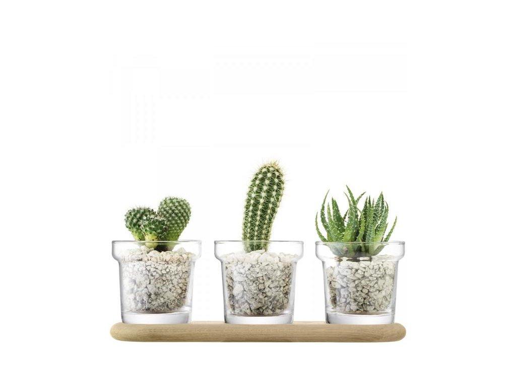 27383 plant trio skleneny kvetinac 11 5cm 3ks na dubove podlozce 11 5cm lsa handmade
