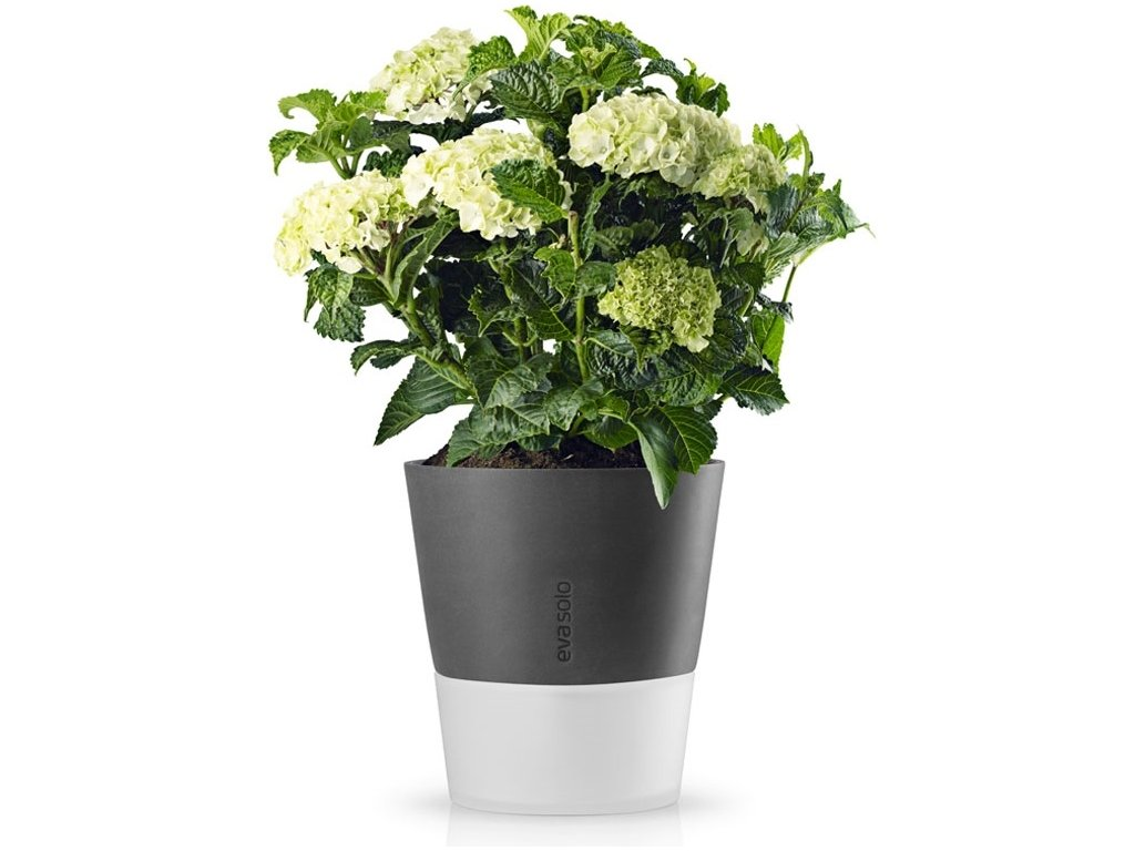 16260 samozavlazovaci kvetinac tmave sedy 27cm eva solo