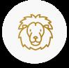 Náramky se lvem