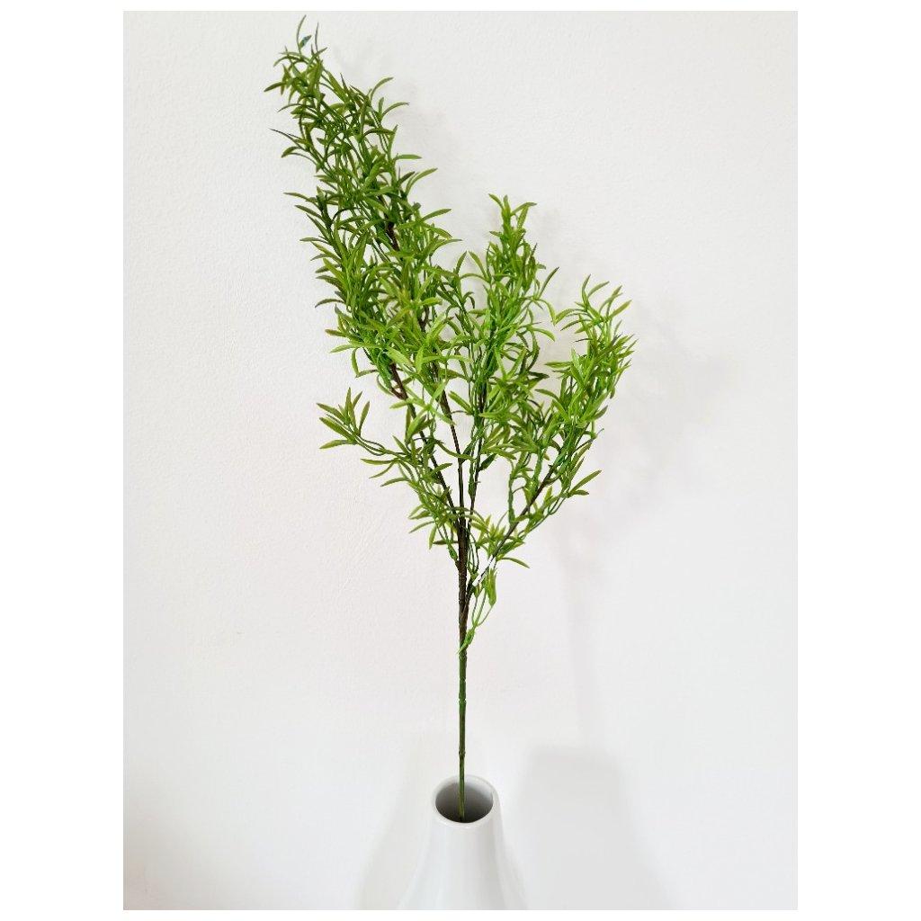 Asparágus barva zelená
