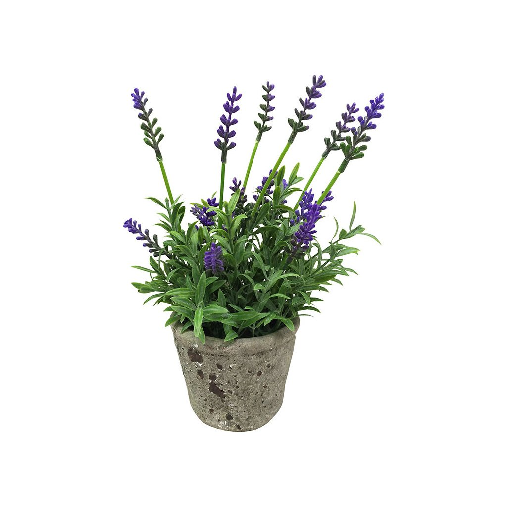 Levandule v betonovém květináči. Květina umělá.