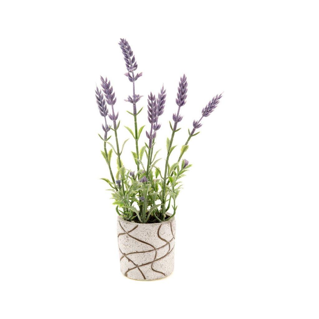 Levandule v betonovém obalu. Květina umělá.