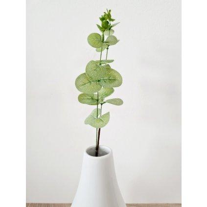 Eukalyptus v zelené barvě