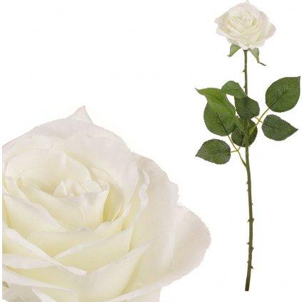 Růže krémová 52 cm