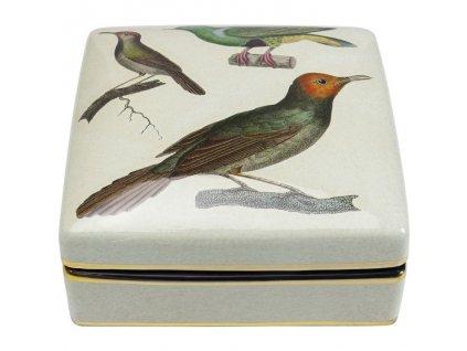 Dekorativní krabička Birds
