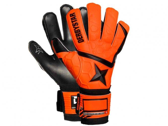 brankarske rukavice derbystar