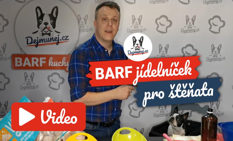 [VIDEO] BARF jídelníček pro štěňata – to nej na základě vlastních zkušeností chovatele bostonků