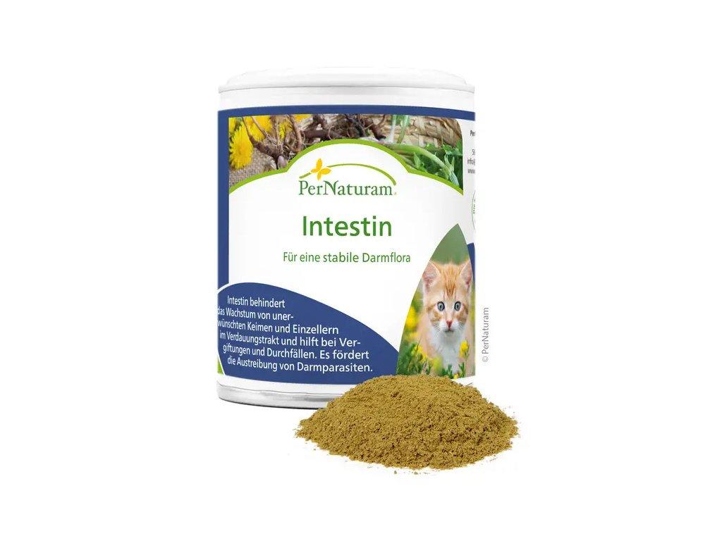 intestin doplněk stravy pro kočky jak vypadá