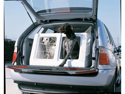 box na psa do auta 3