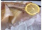Ryby mořské - mražené