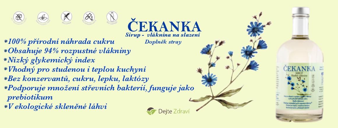 Čekanka