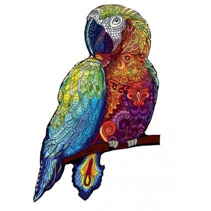 Puzzle papoušek 1