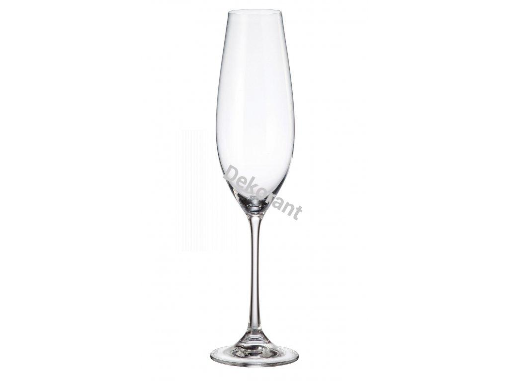 columba flute 260 ml.igallery.image0000006 (1)
