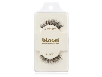bloom dwispy