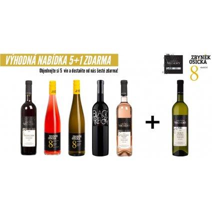 Vinný set 5+1 Bílý