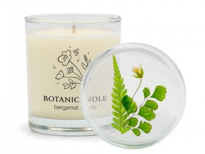 delishka botanicandle bergamot myrta