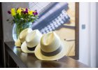 Panamské klobouky