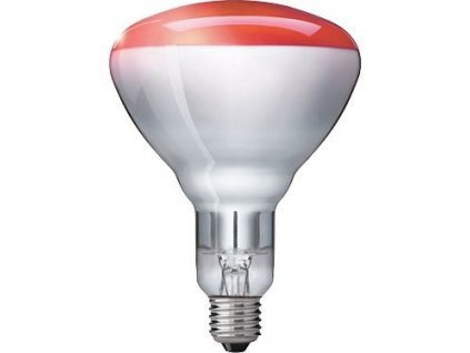nahradni zarovka pro infralampu il 11 100w1