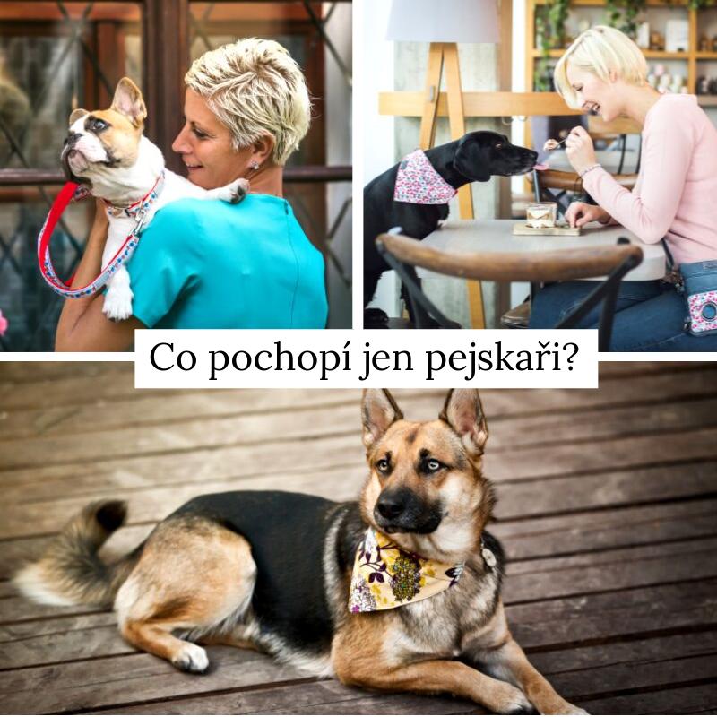 12 věcí, které pochopí jen majitelé psů