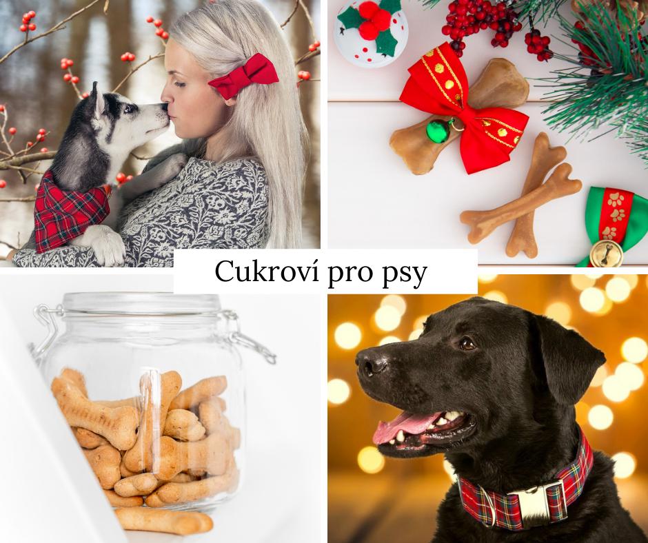 4 recepty na perfektní vánoční cukroví pro psy