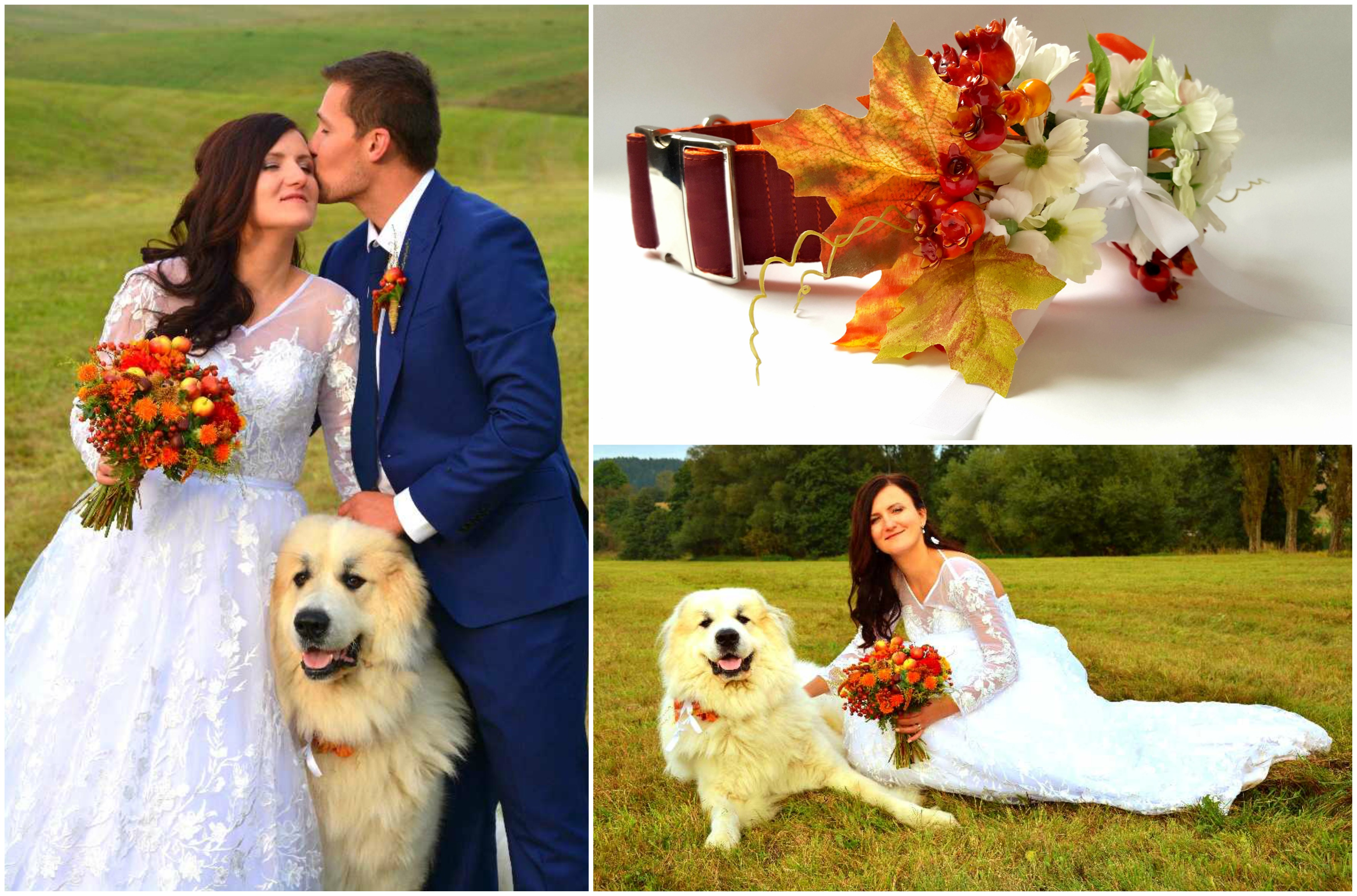 koláž-svatba-podzim