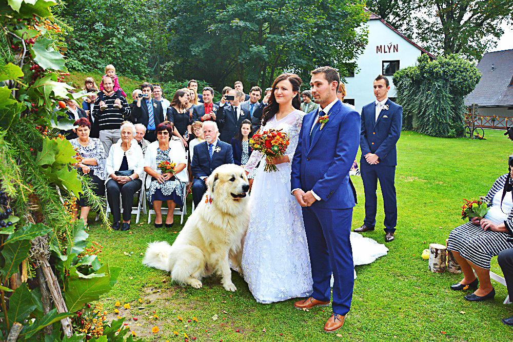 uprava-svatba